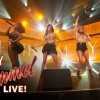 FIFTH HARMONY AND KID INK PERFORM 'WORHT IT' ON 'JIMMY KIMMEL LIVE'